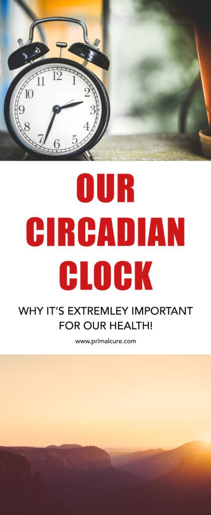 Find out more about our circadian clock and why the cycle is extremely important to our health, so much so that in the 1980's a whole new field of science was created to study it – chronobiology!