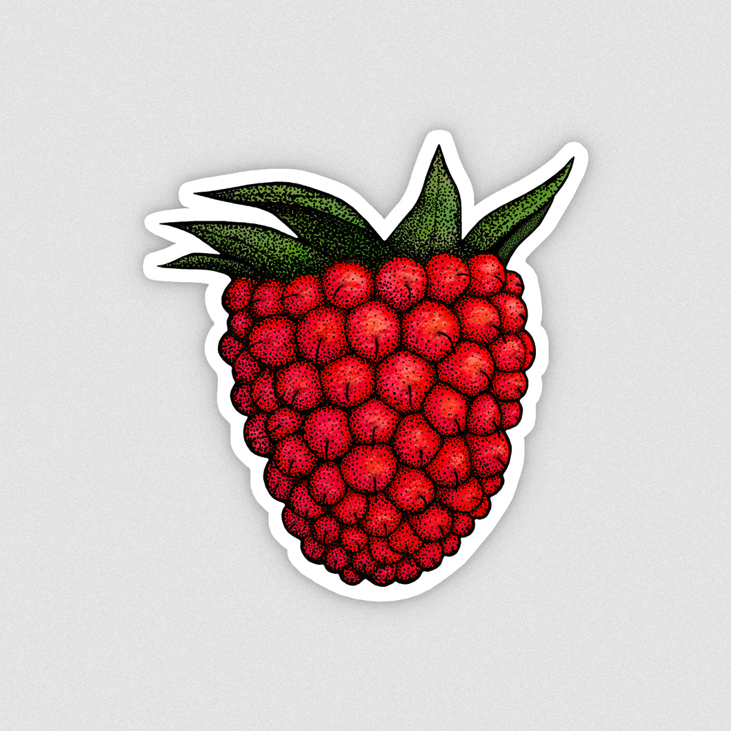 Salmonberry Vinyl Sticker