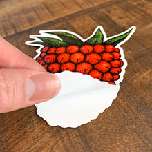 Load image into Gallery viewer, red salmonberry macbook sticker being peeled