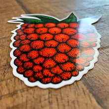 Load image into Gallery viewer, Salmonberry Vinyl Sticker