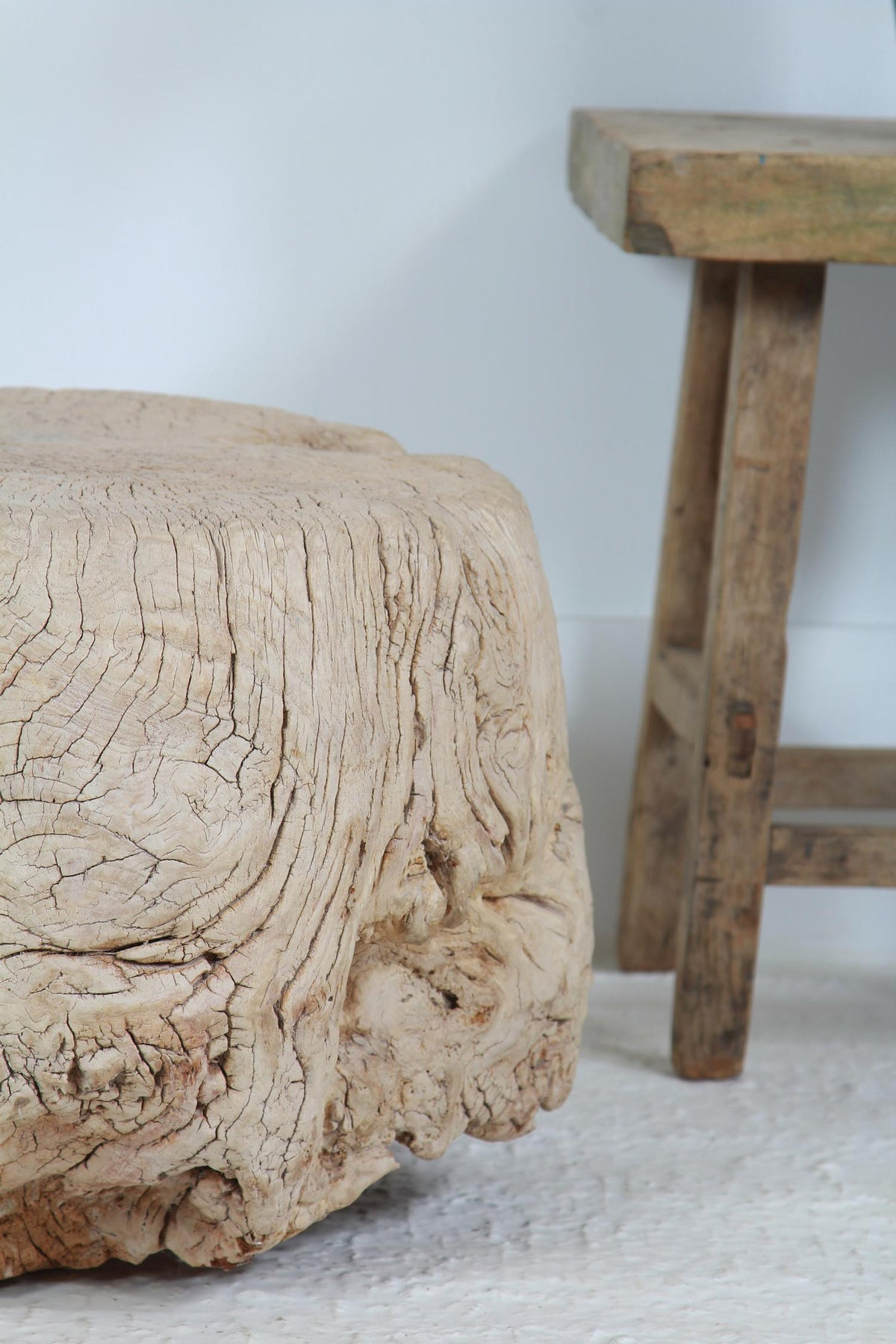 Enormous Unique Gnarly Elm Root Coffee/Side Table