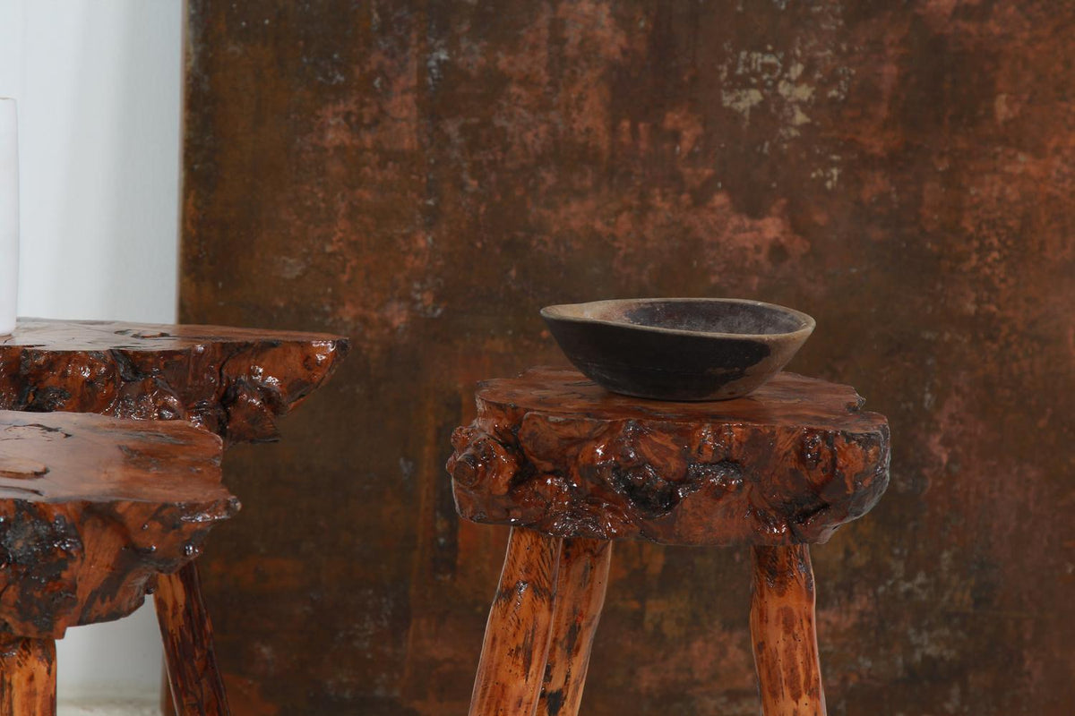 Collection of Four Petrified Wood Coffee/Side Tables
