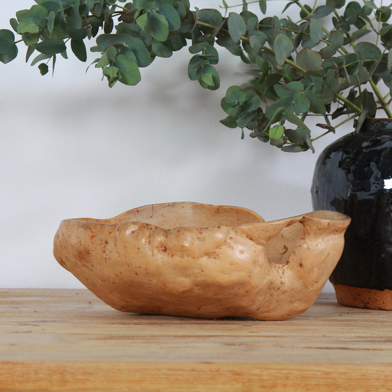 An Expressive and Sculptural Early 20thC  Turned Swedish Birch Root  Bowl