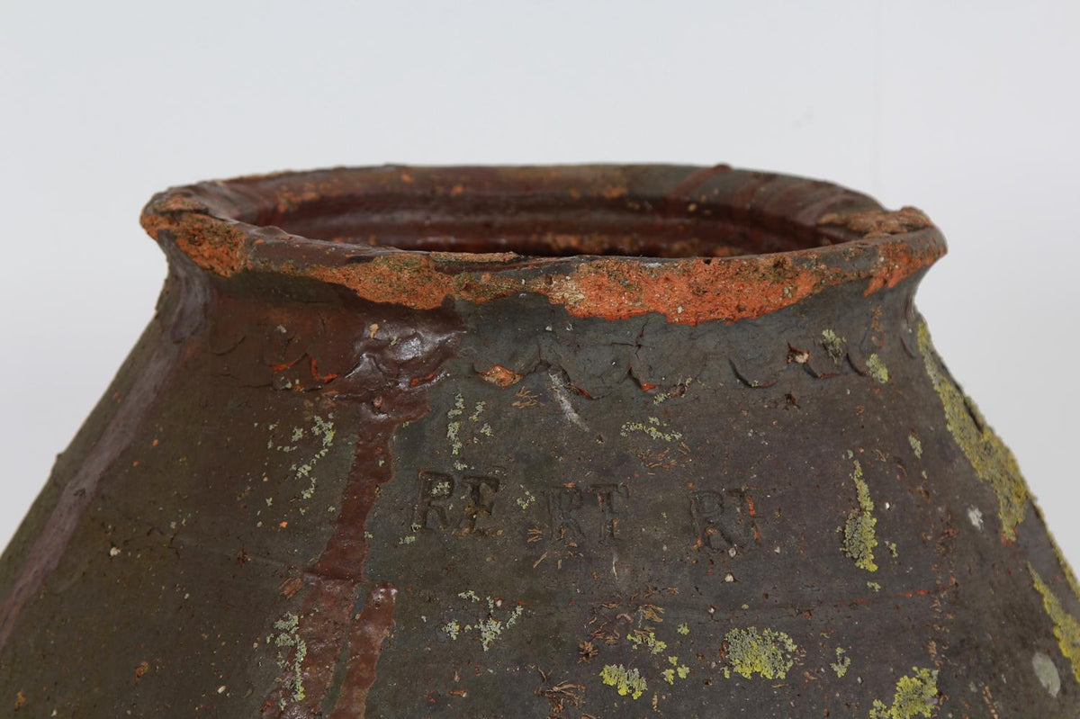 Beautiful Lichen Encrusted Earthenware  French Salting Pot