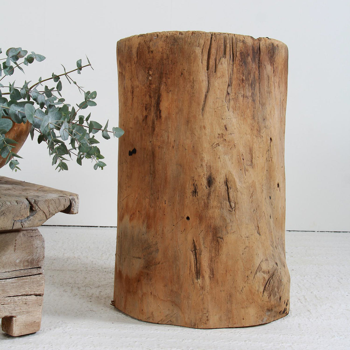 Sculptural 19thC European Tree Stump Planter