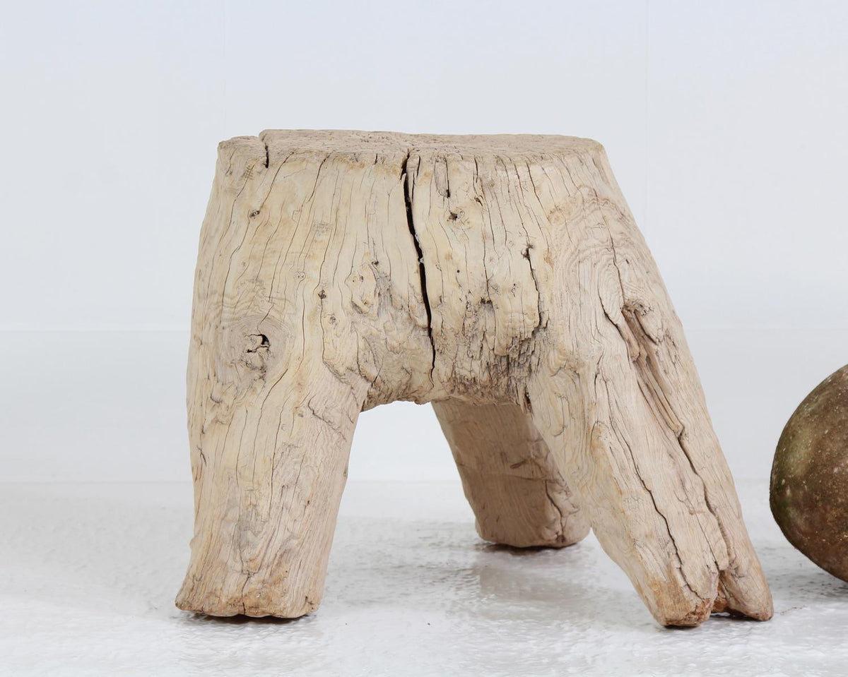 Beautiful & Organic Sculptural Gnarly Tree Table