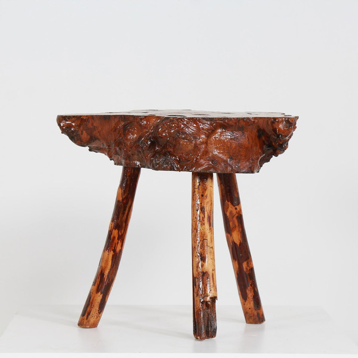 Charming Gnarly Petrified Wood Coffee/Side Table