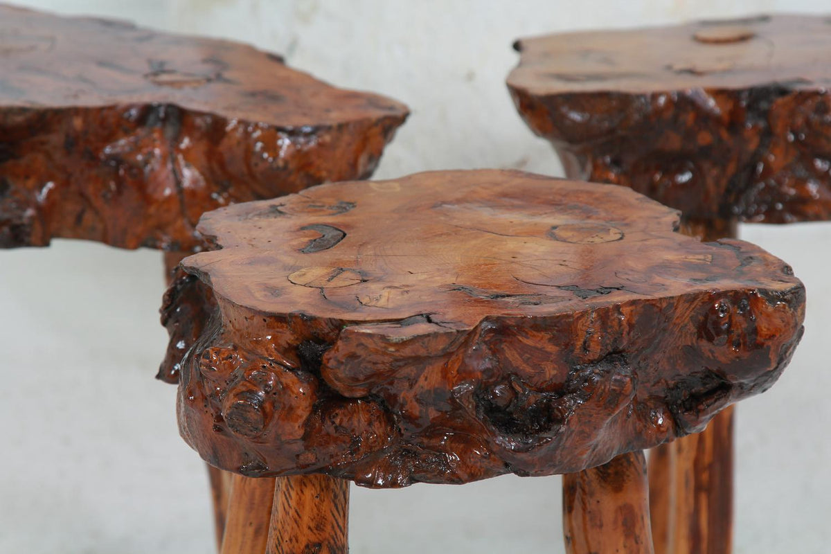 GNARLY PETRIFIED WOOD COFFEE/SIDE TABLES