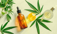 Hemp Oil vs CBD Oil vs Cannabis; What is the Difference?