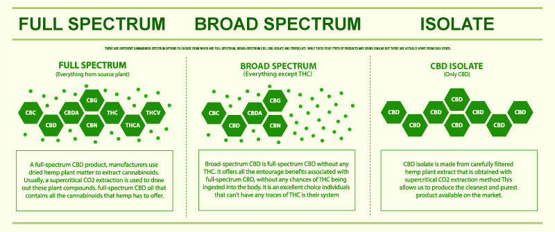 CBD chart that explains the difference between Full Spectrum, Broad Spectrum, and Isolate CBD oil
