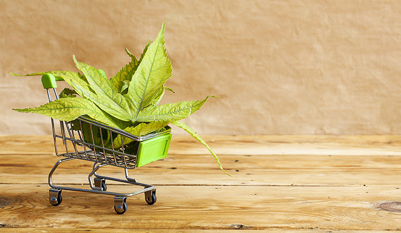 Shopping Cart with CBD. Buying CBD. Don't overpay for CBD