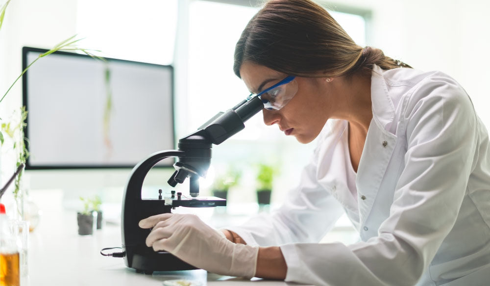 Women scientist looking into microscope to study the entourage effect working with CBD?