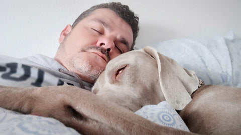 sleepy man sleeping with dog. hemp oil benefits for dogs.