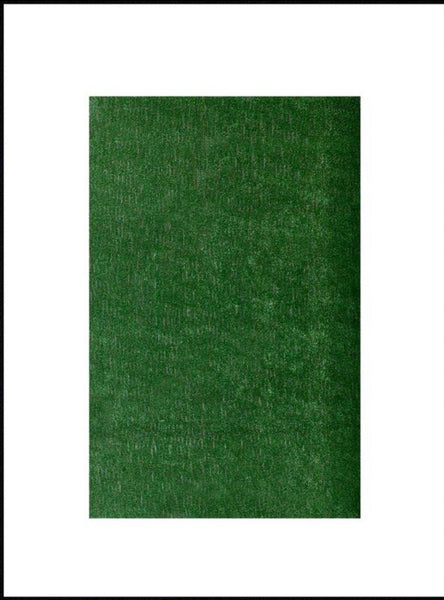 New Artificial 43 Sq Ft Grass Lawn Turf Carpet Indoor/Outdoor 6ft x 7ft 3in x .23in, Green