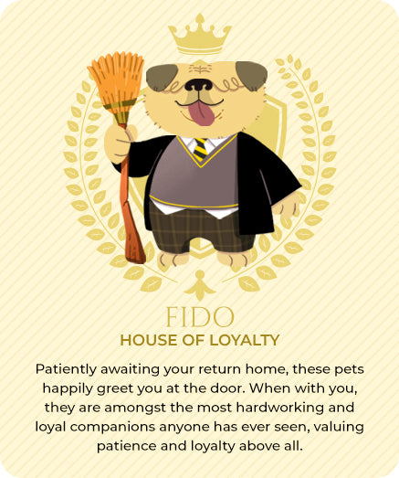 Wizard Pets - House of Loyalty