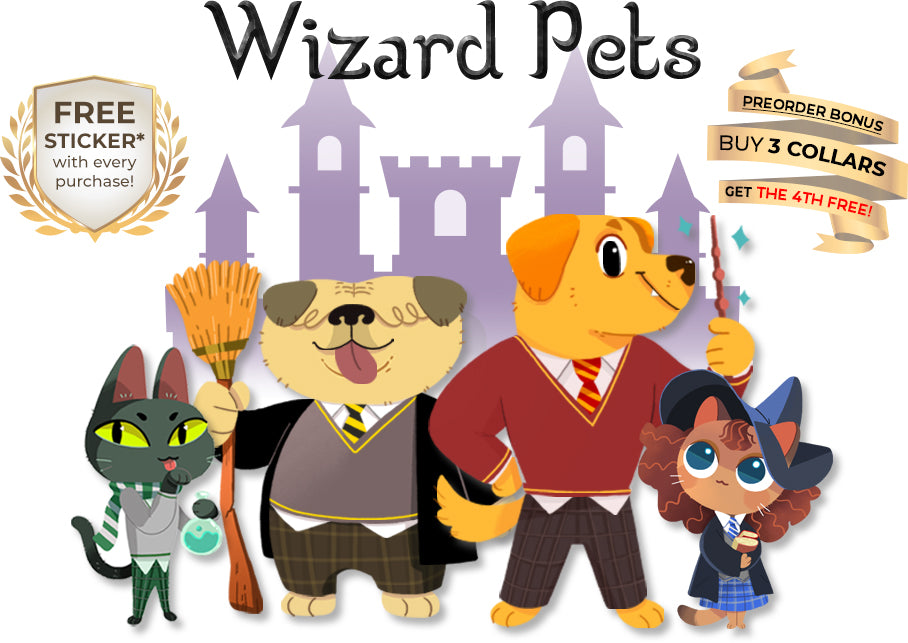 Wizard Pets