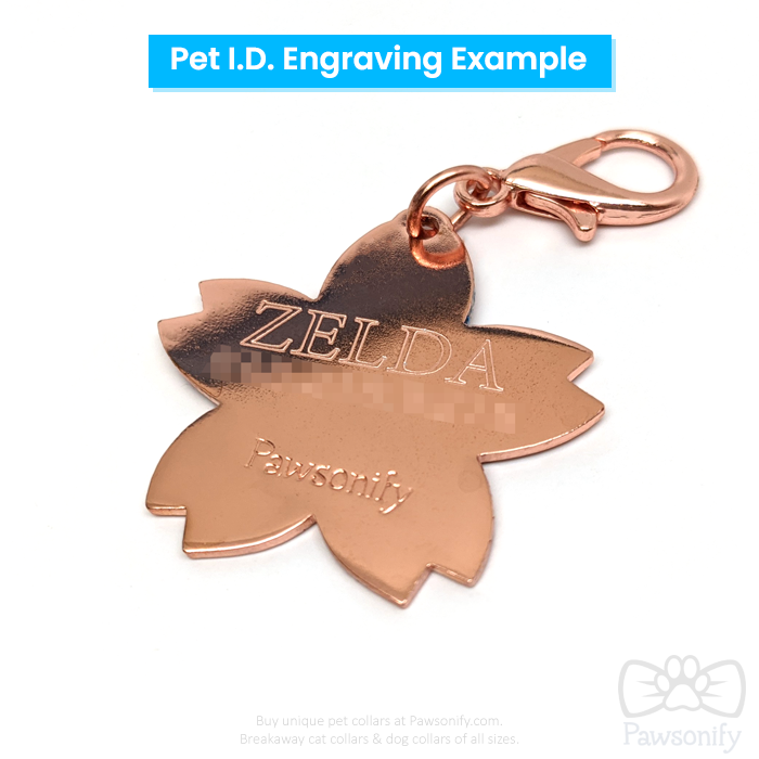 Magical Pet Tag
