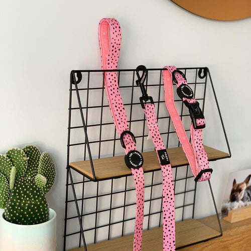 Walk + Wear | Collar | Playful Pink Dots
