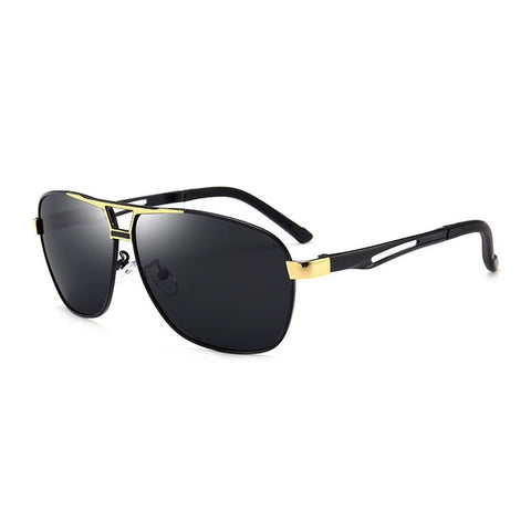 Men Pilot Double Bridge Sunglasses