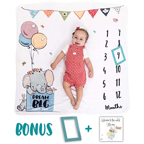 Baby Monthly Milestone Blanket + Greeting Card