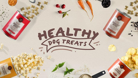 Holistic Healthcare for Dogs