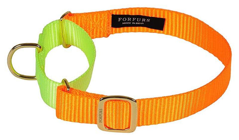 Martingale Dog Collars: How to Use