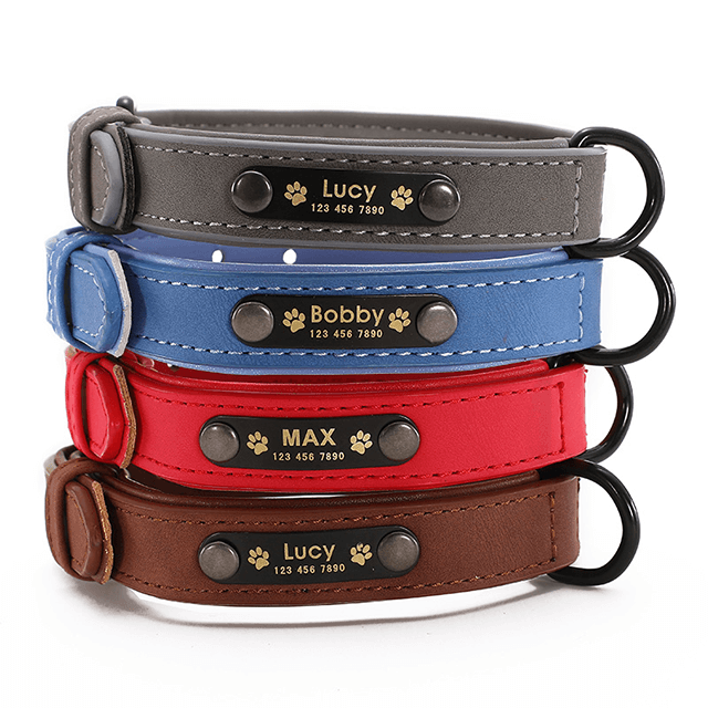Personalized Dog Collars, Custom Leather Dog Collar Name ID