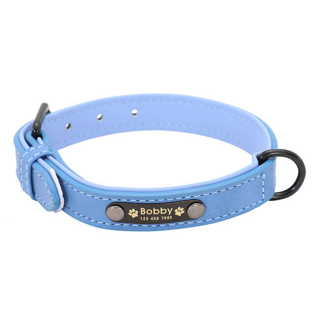 Personalized Dog Collars, Custom Leather Dog Collar Name ID, blue