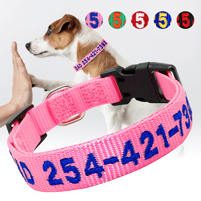 Personalized Embroidered Nylon Dog Collars, Custom Name Phone ID Tag Collar