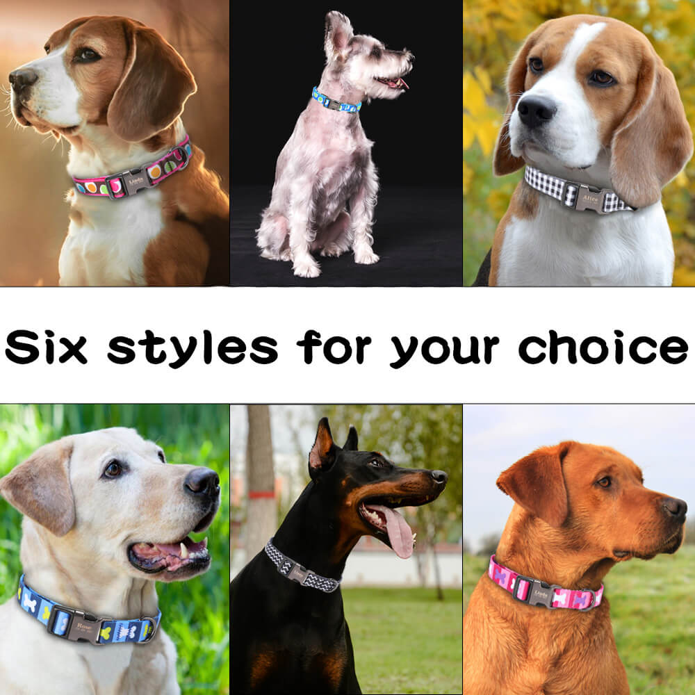 Dog Collar Personalized, Nylon Pet Dog Tag Collar, Custom Puppy Cat Nameplate ID Collars, Engraved, model