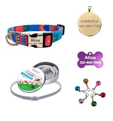 custom dog collars, value package, Bohemia, strawberry