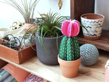 Load image into Gallery viewer, MOON CACTUS DIY FELT SEWING KIT