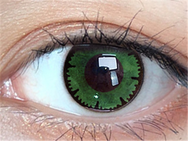Cos lace green contact lens (two pieces) DE1163