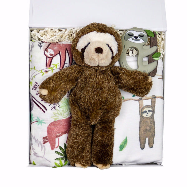 Sleepy Sloth Baby Gift Box