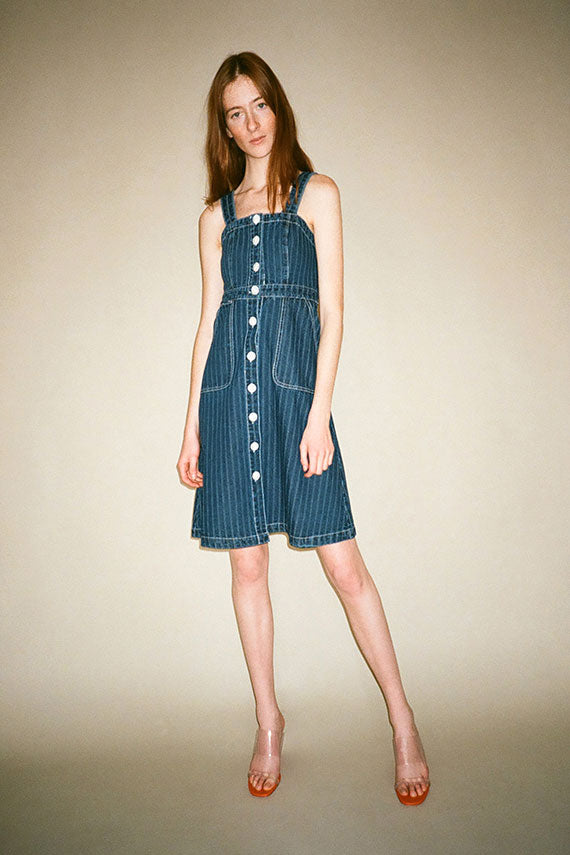 Railroad Stripe Alma Button Down Dress