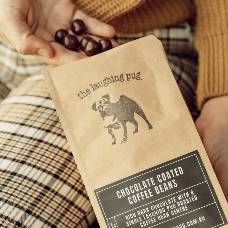 Premium dark chocolate coated coffee beans
