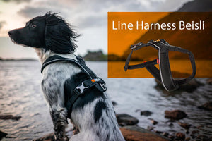 Non-stop Line Harness Beisli