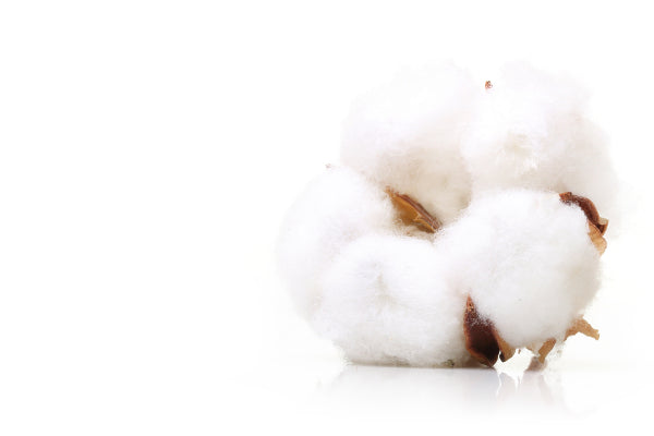 70% GOTS certified organic cotton from Turkey