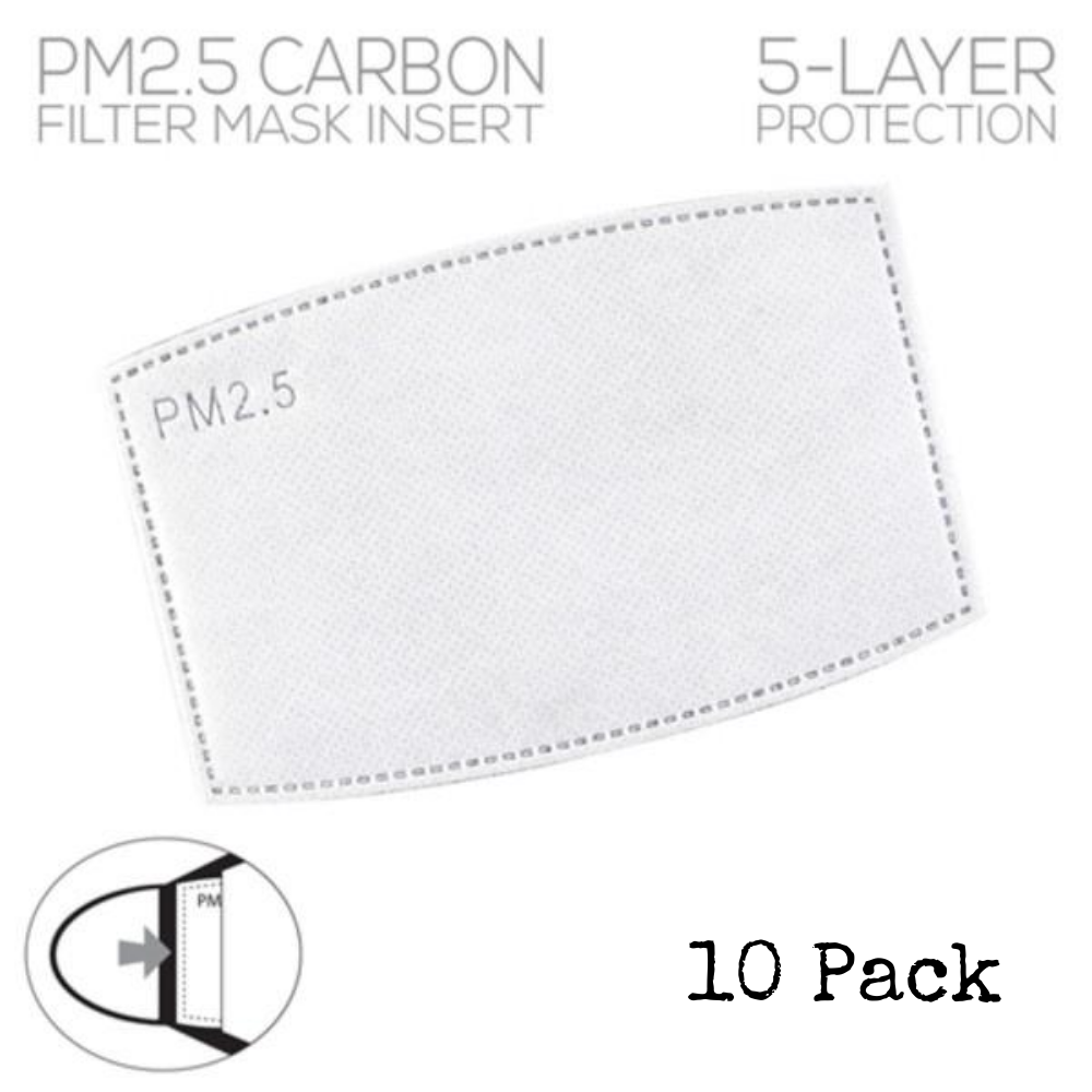 PM2.5 Carbon Filter Mask Inserts