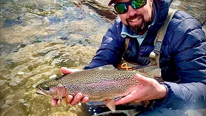 7 Pro Tips to Fly Fishing a Mountain Stream