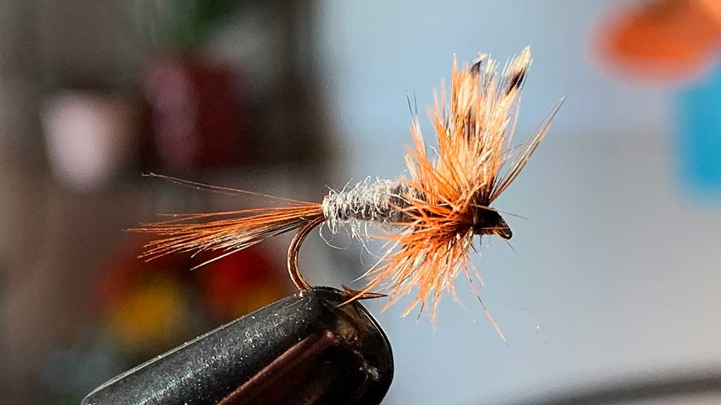 Adams Dry Fly - Best Dry Fly For June