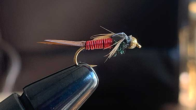 Nymph Pattern, red wire with wings on vice