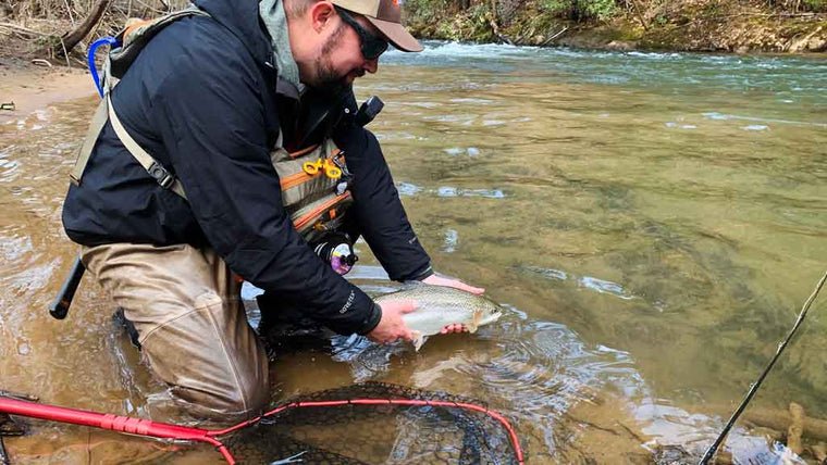 Catch and Release Fly Fishing