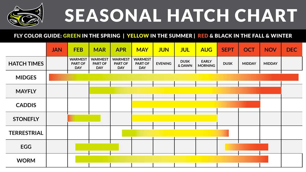 Seasonal Hatch Chart - Drifthook Fly Fishing
