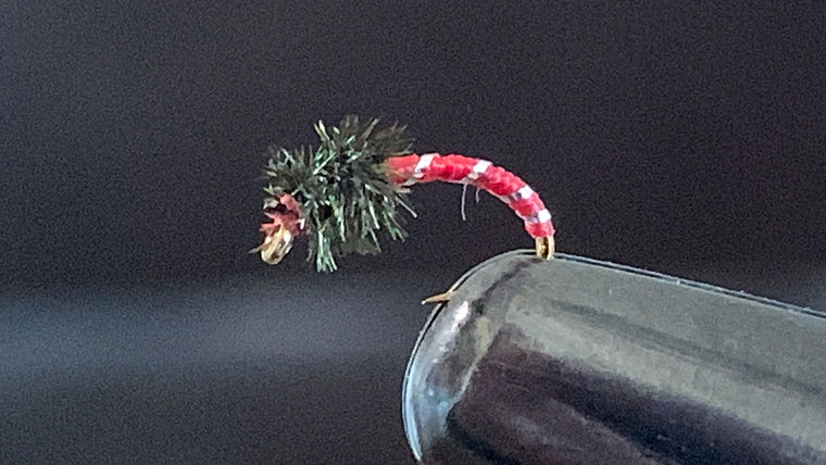Disco Midge - Best Fly For Nymphing in January