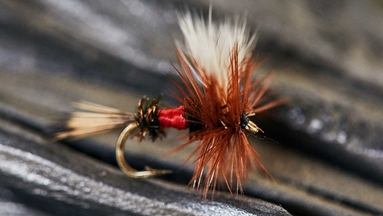 Royal Wolf Attractor Dry Fly