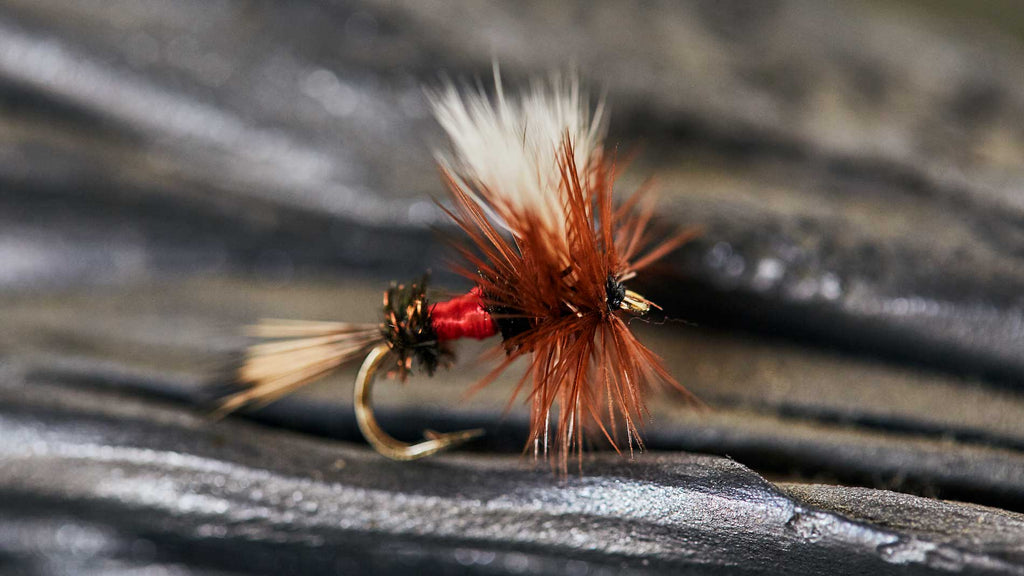 Drifthook Dry Fly Patterns - Royal Wolf