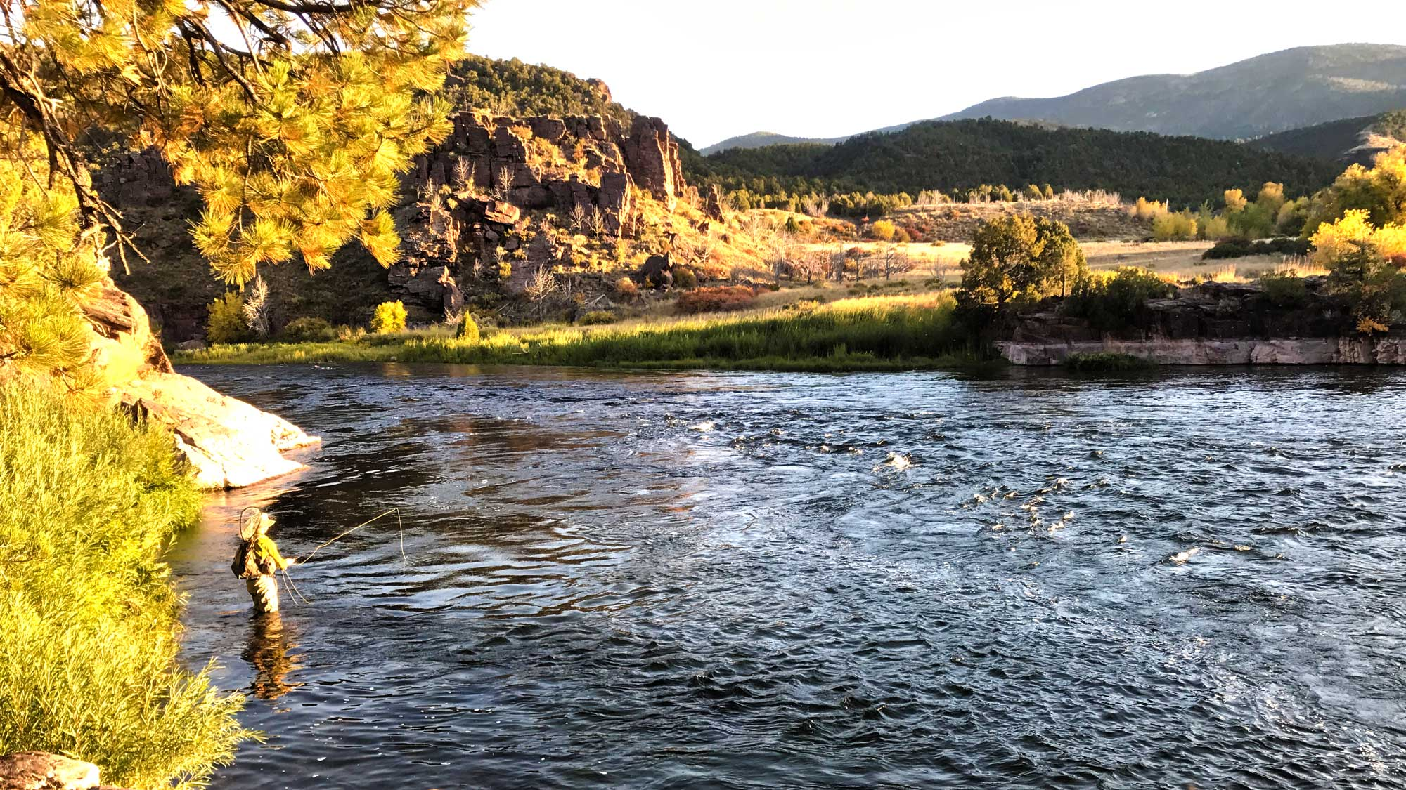 Drifthook Fly Fishing Green River