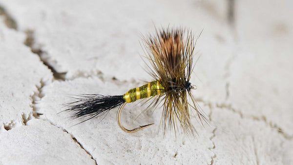 Dry Fly Fishing Fly Hook on Green Drake Fly