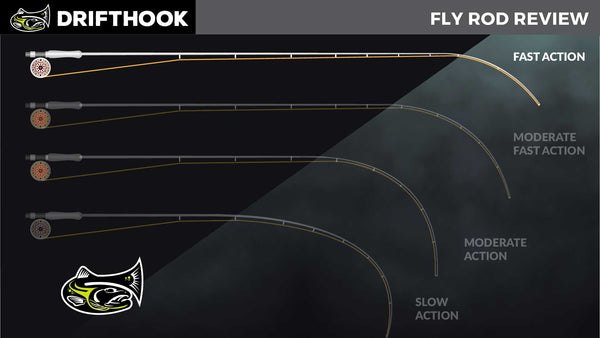 Fly Rod Action Chart